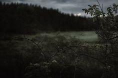 Location~ moody sky~ eerie
