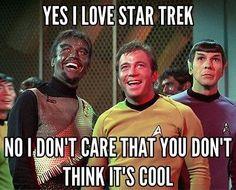 Yes I Love Star Trek