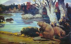 Giant Beavers-At two metres in length and weighing up to 200 lbs, the creatures would have been about the same size as a modern-day Black Bear.