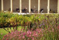 Hauser Wirth garden Lisa Cox Designs