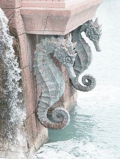 Seahorses by the Sea