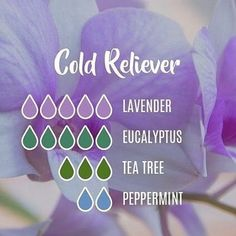 With the weather changing and flu season around the corner, try to use natural options for cold relief! Our Young Living essential oils make it easy to prepare for cold season! This cold relief diffuser blend is perfect for daytime and nighttime relief! Essential Oils For Colds, Essential Oil Diffuser Blends, Essential Oil Uses, Oils For Diffuser, Young Living Essential Oils Recipes Cold, Essential Oil Cold Remedy, Essential Oils Energy, Homemade Essential Oils, Oil For Cough