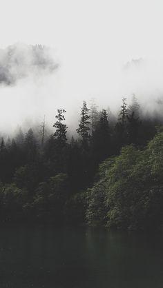 Bradley Castaneda - Photographer Designer Adventurer - Wallpapers - Pack #9 - iPhone5 fog and tress