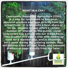 Something we loved from Instagram! What is a CSA?  #solarpowered #Hydroponic #UrbanFarm #UrbanGarden #UrbanHomestead #urbanchickens #permaculture #composting #ChickenButt #automation #raspberrypi #gardentips #organic #mealworms #wormsareawesome #strawberries #origami #origamipots #raisedbedplanters #darklingbeetles #csa #eggs #urbanfarmer by organicgringo Check us out http://bit.ly/1KyLetq