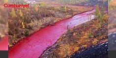 Nehir kıpkırmızı oldu: Rusya'nın Norilsk bölgesindeki bir nehirin salı günü renginin kırmızıya dönmesi şaşkınlık yarattı. Yetkililer henüz sebebi hakkında kesin bir açıklama yapmadı.