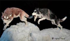 Fake taxidermy. Huskys artificiales. Fauna, Taxidermy, Mammals, Husky, Dogs, Animales, Pet Dogs, Doggies, Husky Dog