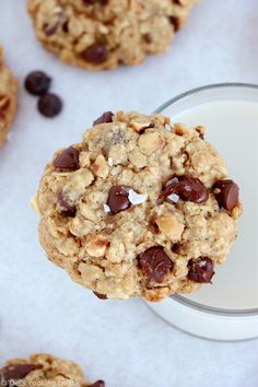 Simple chocolate chip oatmeal cookies with hazelnuts are perfect bakery-style cookies. They are easy to make, with old fashioned oats, chocolate chips and chopped hazelnuts. Oatmeal Chocolate Chip Cookie Recipe, White Chocolate Cranberry Cookies, Healthy Oatmeal Cookies, Oat Cookies, Chocolate Biscuits, Chocolate Chunk Cookies, Oatmeal Chocolate Chip Cookies, Chocolate Hazelnut, Cookies Et Biscuits