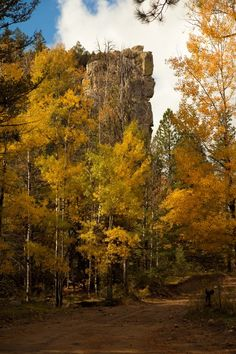 Philmont Scout Ranch - near Cimarron, New Mexico -- I've seen this beautiful rock in person! Lovelovelove!