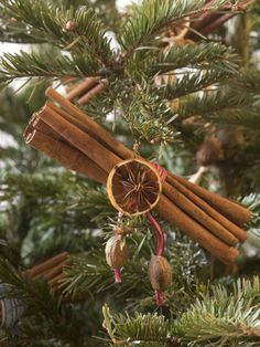 Create naturally beautiful Christmas ornaments using cinnamon sticks in this craft chosen by HGTV holiday experts.