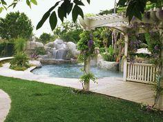backyard has tropical feel