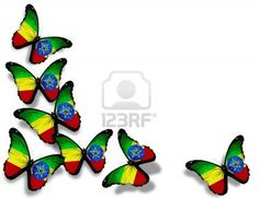 Ethiopia flag butterflies