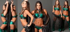 WWE The Bella Twins Ring Gear!