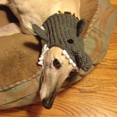 SHARK  Made to Order  Snood Hat for Dogs  by GreyBabyCrochet, $23.00