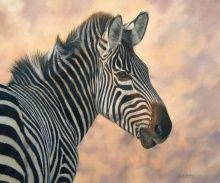 Zebra - David Stribling