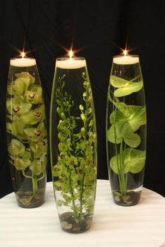 Water plants with tea light candles
