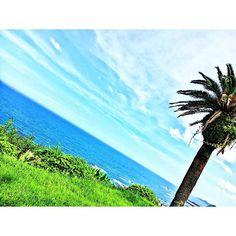 【fu_37a】さんのInstagramをピンしています。 《宮崎の海に行きたい⛱ 今年は遊べる年じゃないけど 8月は微笑女会やら理系クラス会やら 何と言ってもAAAのFCイベントやらで 楽しみがいっぱいあるから 早く8月になってほしい(⊃´-`⊂) 8月の最初に単位認定あるけど… . . . #Miyazaki#sea#blue#sky#summer#vacation#宮崎#南国#海#行きたい#でも#焼けたくない#去年初めて#日焼けで#皮むけた#海行くときは#ちゃんと#日焼け止め#塗らないとだめですよ》