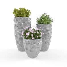 Plant 64 model, this model plant piece of Art, Textures low-poly model ready for Virtual, accurately design for perfect visualization Low Poly 3d Models, 3d Visualization, Planter Pots, Art Pieces, Texture, Design, Surface Finish, Artworks