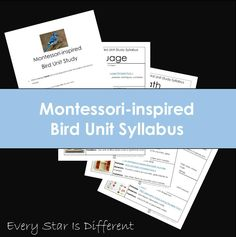 A blog about Montessori and special needs
