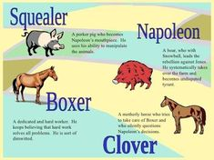 Image result for animal farm characters