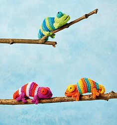 Knitters Love Tiny Chameleons Too and Good News, Now There& a Pattern For You! Knitters Love Tiny Chameleons Too and Good News, Now Theres a Pattern For You! Animal Knitting Patterns, Stuffed Animal Patterns, Crochet Patterns, Free Knitting, Free Crochet, Knit Crochet, Small Knitting Projects, Crochet Projects, Easy Amigurumi Pattern