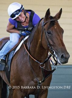 BEHOLDER, with Janeen Painter up, a few mornings ago at Santa Anita.  #BreedersCup