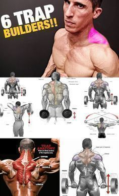 🔥 How to Shrugs for Muscle Growth Traps 🚨 The shoulder belt visually looks unfinished, if the trapezius muscles are not sufficiently developed. Fitness Workouts, Gym Workout Tips, Weight Training Workouts, Sport Fitness, Muscle Fitness, Workout Videos, Fun Workouts, Gain Muscle, Easy Fitness