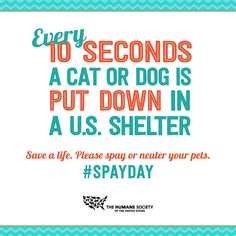 Save a life. Celebrate #SpayDay and get your pets spayed or neutered!