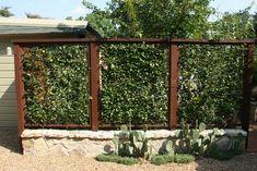 separè da giardino in rete metallica con delle piante