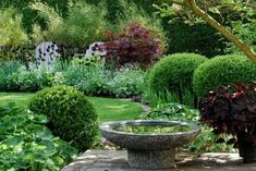 Umberto Pasti 39 S Tangier Garden Seen At Plants Pinterest