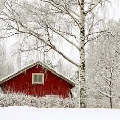 Rode houten huis in Finland - Red house in Finland. I want to go to Finland. Winter Magic, Winter's Tale, Snow And Ice, Winter Beauty, Scandinavian Home, Little Houses, Winter White, Christmas Home, Winter Wonderland