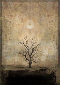 """Mystic Tree"" by Daniel Colvin Fine Art"