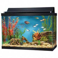 Nicrew Automatic Aquarium Fish Feeder Fish Food Dispenser For Fish Tank Batter Cheap Sales 50%