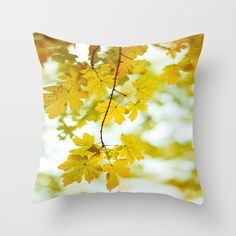 Light Glorifies Everything  Throw Pillow