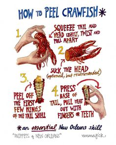 How to Peel Crawfish Emma Fick Art How To Eat Crawfish, Crawfish Party, Seafood Boil Party, Fish And Seafood, Crawfish Season, Crawfish Recipes, Seafood Boil Recipes, Seafood Meals, Seafood Dishes
