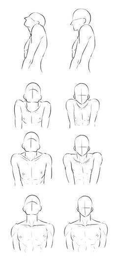 Human Drawing Reference, Human Body Drawing, Human Body Art, Art Reference Poses, Anatomy Sketches, Anatomy Drawing, Manga Drawing, Drawing Sketches, Drawings