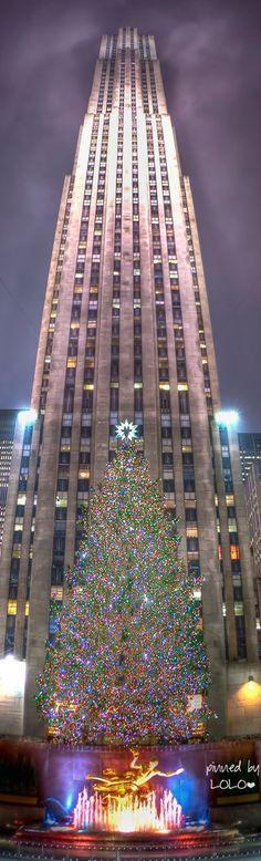 Navidad  en el Rockefeller Center.  Sobre la estatua dorada del dios griego  Prometeo y a  los pies del GE Building,  el gran arbol y sus miles y miles de luces. Suelen ser piceas, y el del año 2014, que  media 26 metros, se llevo a Nueva York desde Blomsburg, Pennsylvania
