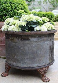 Container gardening is a fun way to add to the visual attraction of your home. You can use the terrific suggestions given here to start improving your garden or begin a new one today. Your garden is certain to bring you great satisfac Garden Urns, Garden Yard Ideas, Garden Spaces, Garden Planters, Lawn And Garden, Garden Landscaping, Container Flowers, Container Plants, Container Gardening