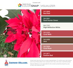 The ColorSnap® paint color matching app uses your Android or iPhone smartphone to match Sherwin-Williams' paint colors to pictures of your favorite things. Burgundy Colour Palette, Color Schemes Colour Palettes, Green Color Schemes, Green Colors, Coral Bells, Vintage Holiday, Color Pallets, Better Homes, Hunter Green