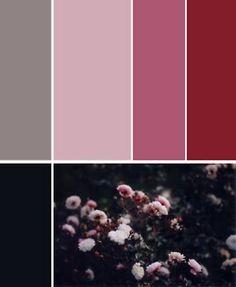 Black-to-pink