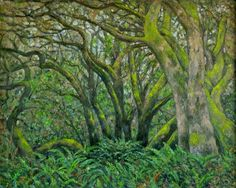 Trees in Marin County by Dean Holland (b. 1944)