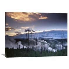 Global Gallery Nature Photographs Norris Geyser Basin with Steam Plumes from Geysers, Yellowstone National Park, Wyoming Photographic Print on Wrap...