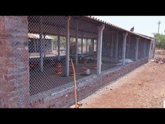 🐓 Million+ Views 🐓 1000 sq. shed and first Desi poultry batch by Raju Dada Walk In Chicken Coop, Chicken Shed, Chicken Cages, Chicken Garden, Cattle Farming, Poultry Farming, Goat Farming, Livestock, Backyard Coop