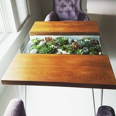 Dining table | Living Furniture | Steel, wood, succulents, cacti