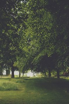 Green walkway »» thomas hanks