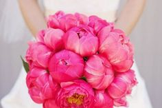 pink peonies wedding bouquet with navy/white striped ribbon tie Peonies Bouquet, Pink Bouquet, Pink Peonies, Pink Flowers, Flower Bouquets, Boquet, Peony Colors, Ranunculus, Exotic Flowers