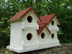 Purple martin,bird house