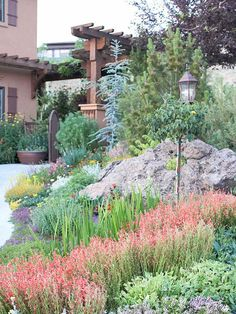 A Better Garden Bed: Water saving strategies include bolder to fill in gaps between drought tolerant plants. Lavendar and penstemon. Evergreens for structure, color. Curves.
