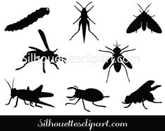 Insects Silhouette Vector Graphics Download