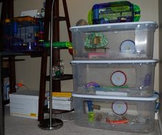 i feel so bad when i look at my hamsters cage xD it  is prettyy big for a store bought cage but it still seems like a tiny space to be in for your whole life.... i have been thinking of trying bin cages again but im not sure :P i mean they look super cheapo but would you rather live in that thing on the very top or all 3 of those boxes?  hmmmmm....