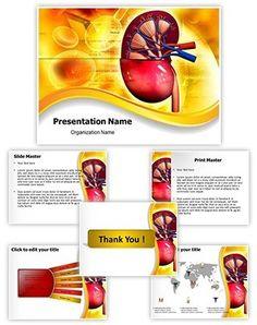 Heart blood circulation powerpoint presentation template is one of human kidney powerpoint template is one of the best powerpoint templates by editabletemplates toneelgroepblik Image collections